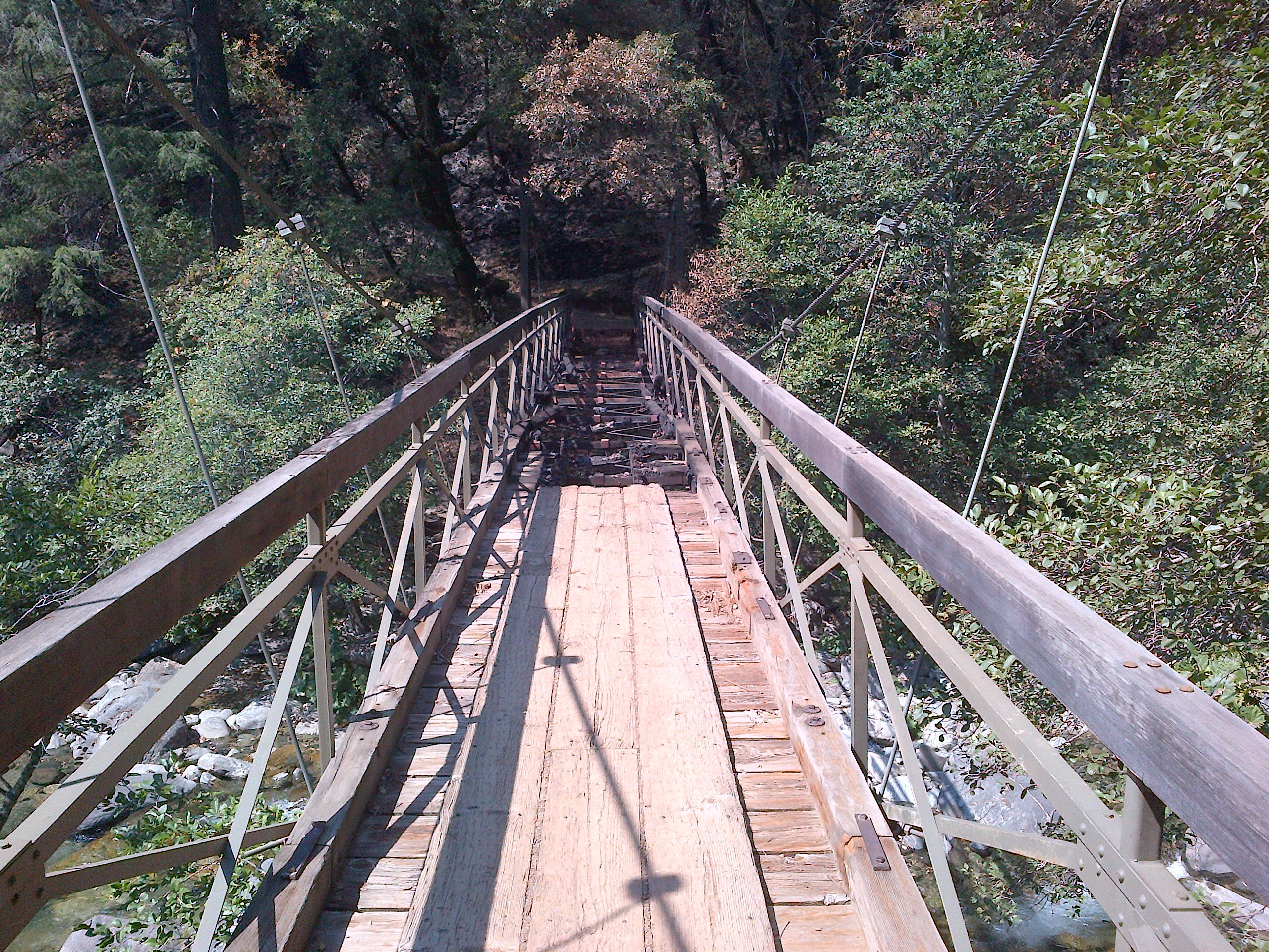 Swinging Bridge Trail Run