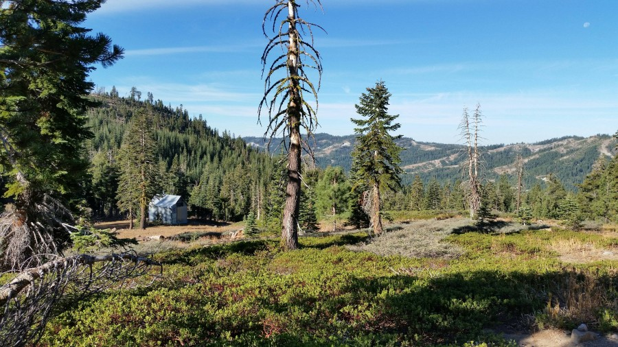 Hodgson's Cabin Near WS Trail